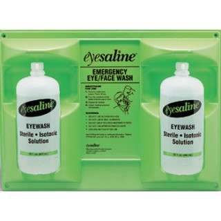 462 Fendall Eyesaline Double Eye/Face Wash Wall Station